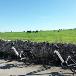in-bicicletta-matera-ad-altamura-fra-murgia-e-campagna-6