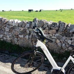 in-bicicletta-matera-ad-altamura-fra-murgia-e-campagna-7