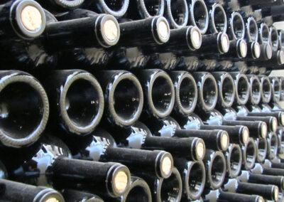 Bottiglie di Negroamaro presso le Cantine Garofano