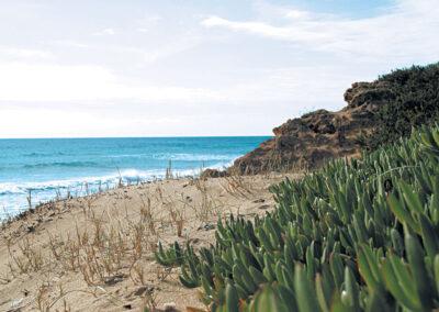 Paesaggio costiero pugliese