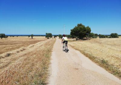 In bici nel Parco Regionale delle Dune Costiere