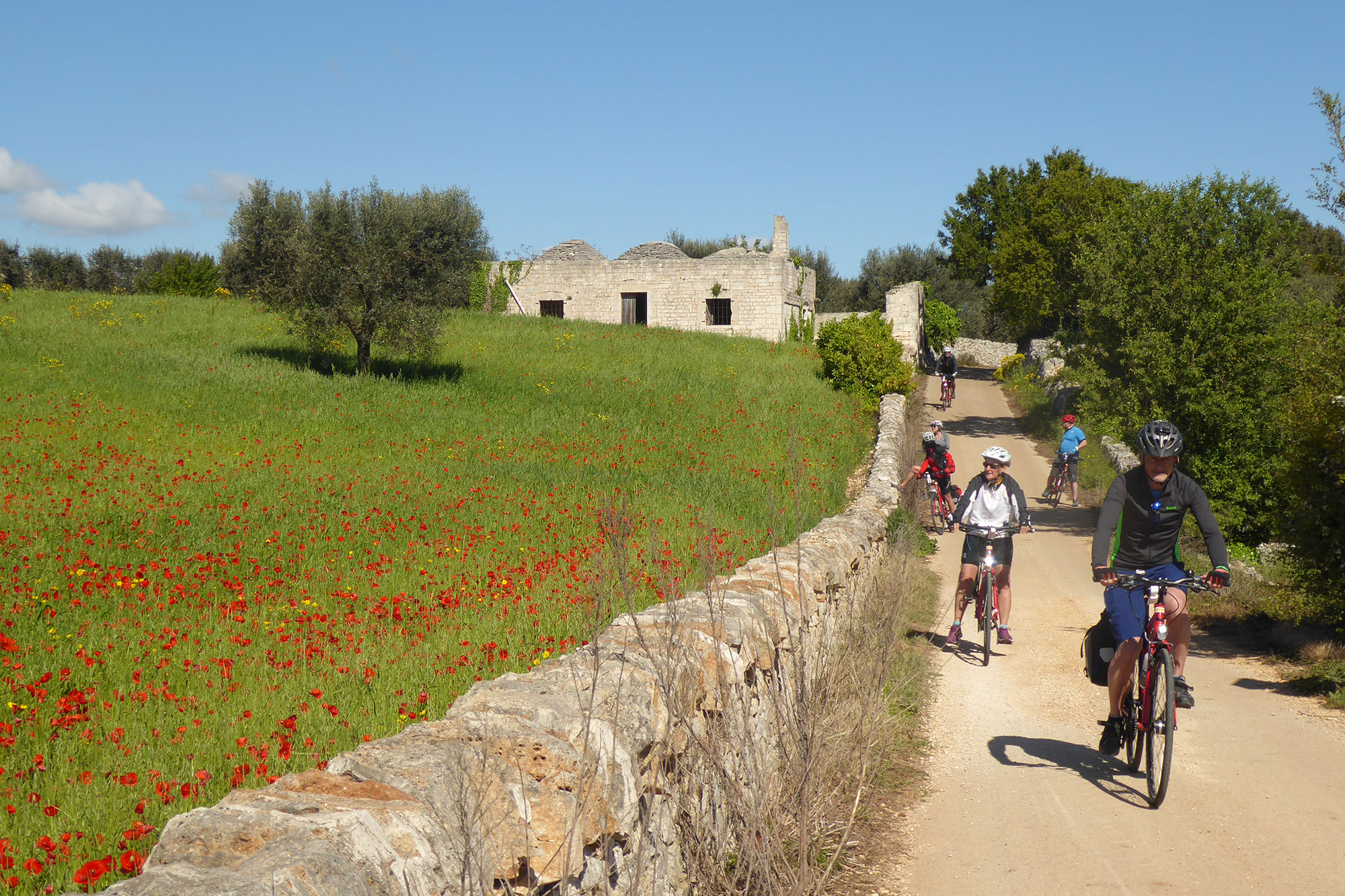 Valle d'Itria by bike